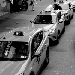 New York Taxis by Irritated Eye