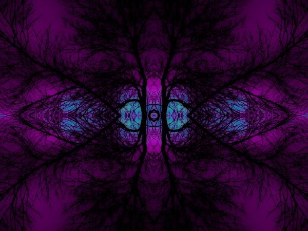Portal  10  by Jesse Schilling