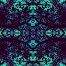 Portal  36  by Jesse Schilling