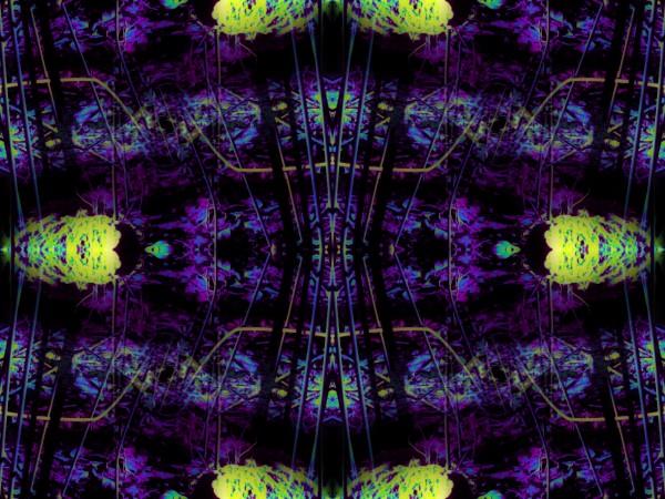 Portal  47  by Jesse Schilling