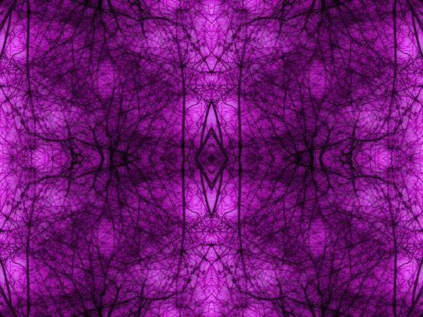portal 02D02BA5 by Jesse Schilling