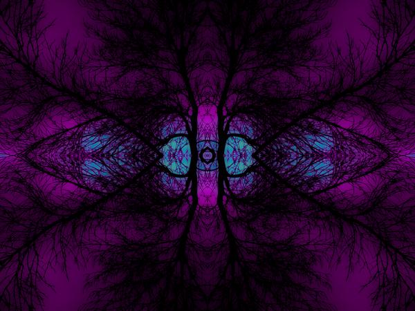 portal ECE7F441 by Jesse Schilling