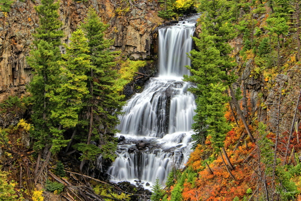 Waterfalls Yellowstone National Park Wyoming by Jim Zenock