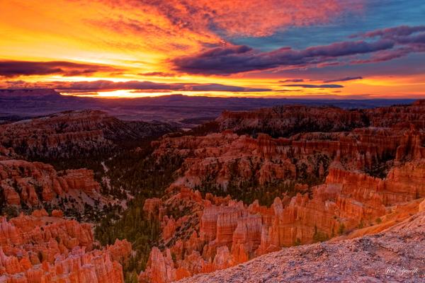 Bryce Canyon National Park Utah by Jim Zenock