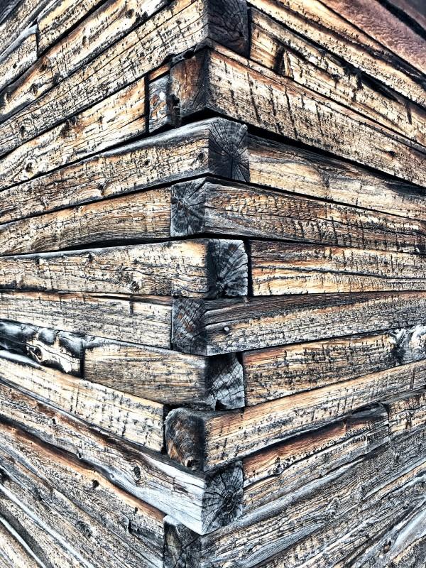 Log wall art  by Johnnyphotofreak