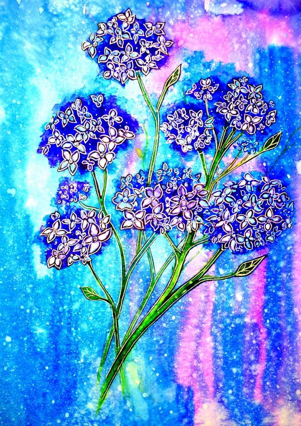 Hydrangeas by Linda Callaghan