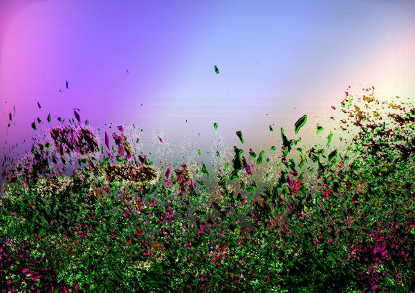 Abstract Flowers by Lutz Roland Lehn