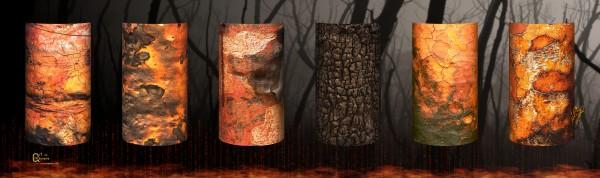 tree bark aBlaze by Stephen James