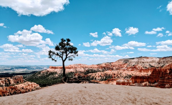 Bryce Canyon V by Broken Compass Life Photography