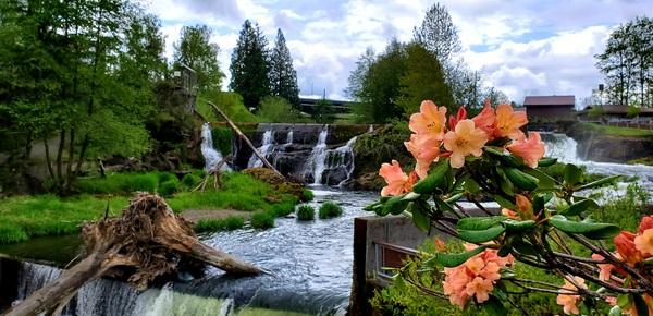Tumwater Falls by Yeon Hee Yim