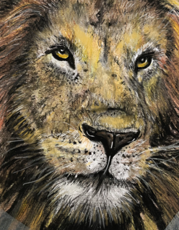 lion by anartlova