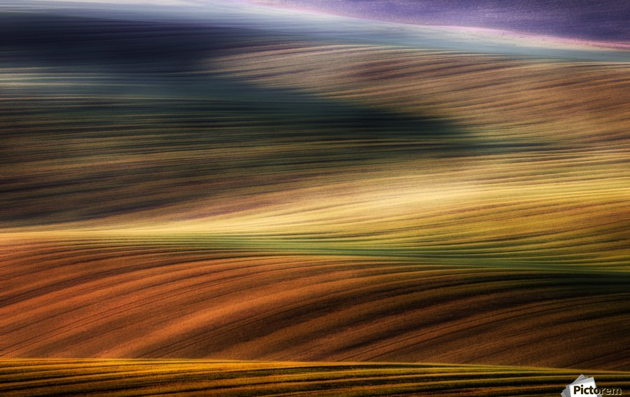 autumn fields  Print