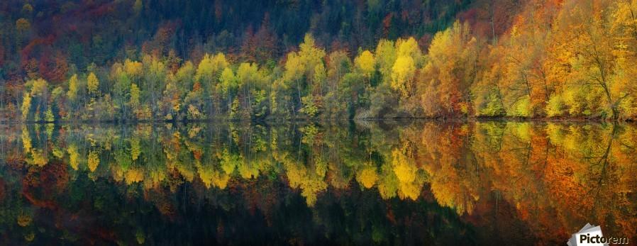 Autumnal silence  Print