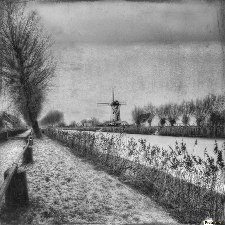 My beloved flat country: Damme  Print