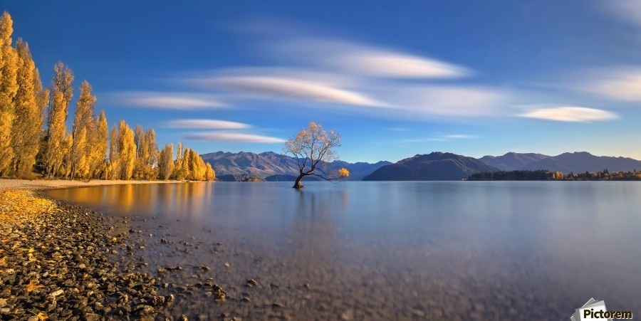 Autumn in Lake Wanaka  Print