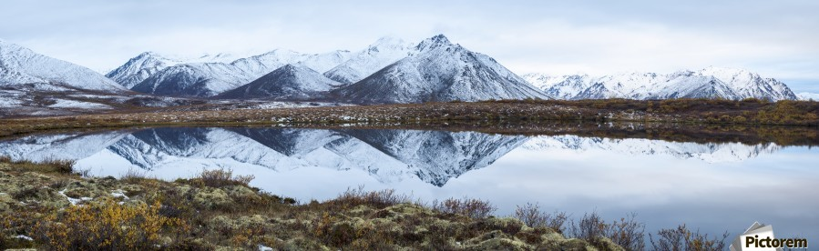 Mount Adney reflected in a pond along the Dempster Highway in the northern Yukon; Yukon, Canada  Print