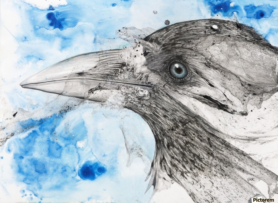 Illustration of a bird's eye and beak with mottled blue and white background  Print