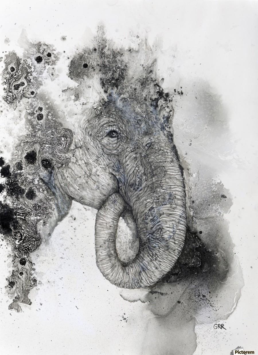 Illustration of an elephant's head  Print