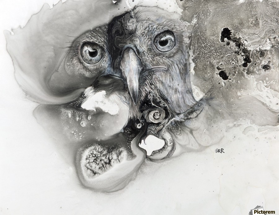 Illustration of a bird's face surrounded by mottled textures and abstract  Print