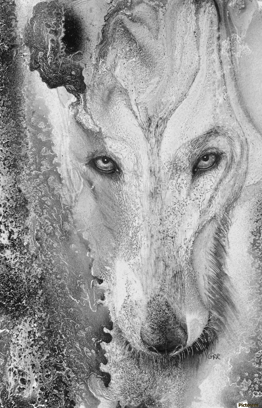 Illustration of a wolf and a mottled background  Print