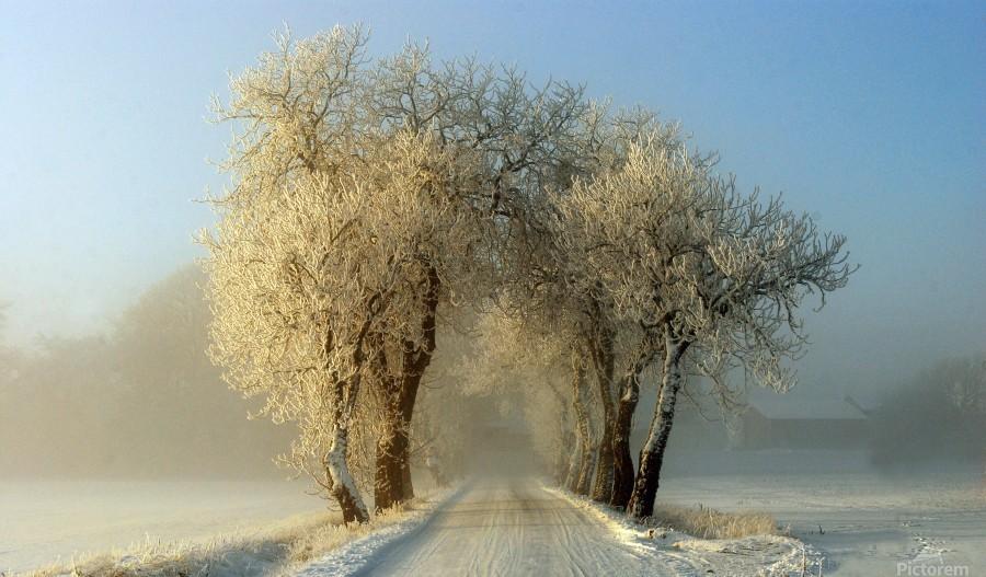 Winter  gateway  Print