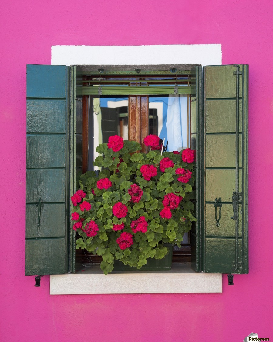 Pink Wall And Green Shutters, Burano, Italy  Print