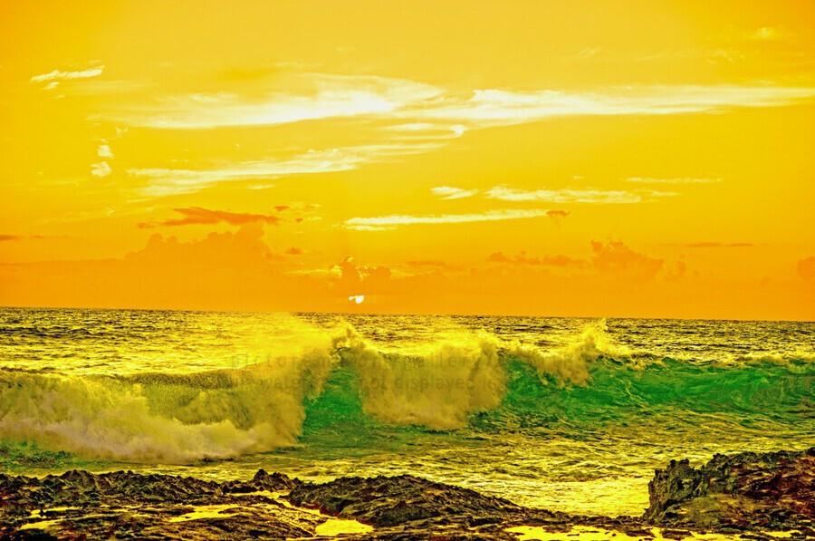 At the Sea Shore  Print