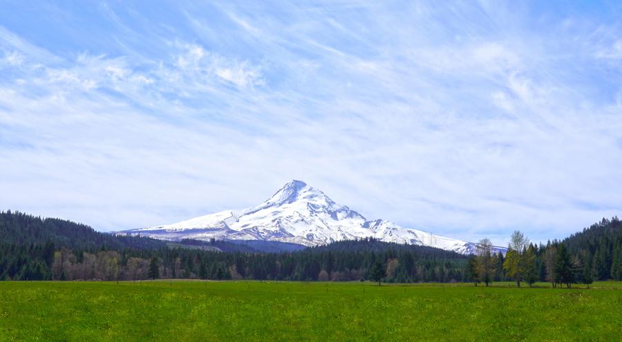 Majestic Mount Hood   Cascade Mountain Range Oregon  Print