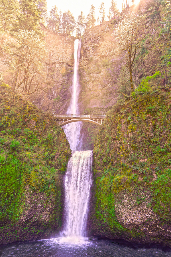 Multnomah Falls Bathed in Sunlight   Columbia River Gorge National Scenic Area   Oregon Pacific Northwest  Print
