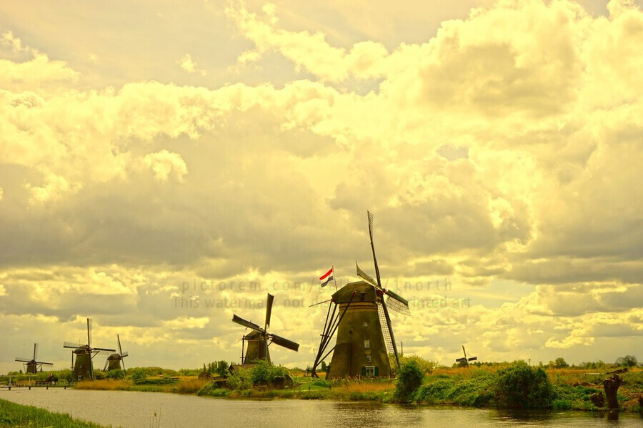 Windmills at Sunset   Print