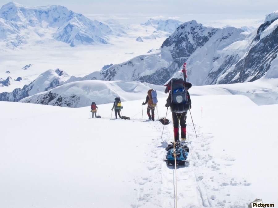 Mountaineer Group Descends Into The Maccarthy Gap On The King Trench Route, Mt. Logan, Kluane National Park, Yukon Territory, Canada, Summer  Print