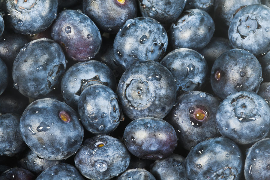 Close up shot of several fresh blueberries.  Print
