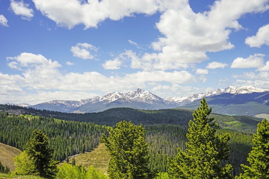 Back Country Colorado 1 of 8  Print