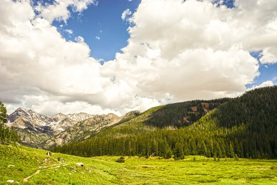 Back Country Colorado 3 of 8  Print