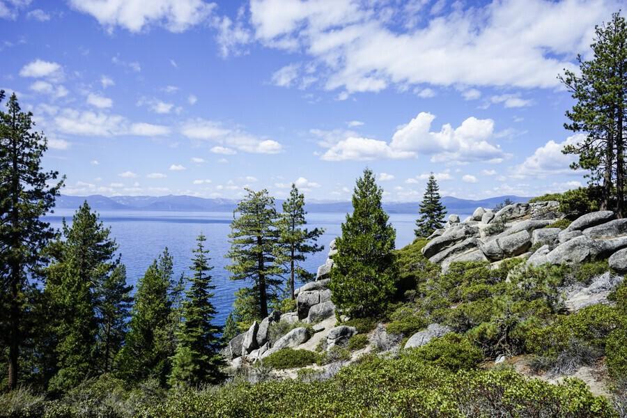 Spring at Lake Tahoe 5 of 7  Print