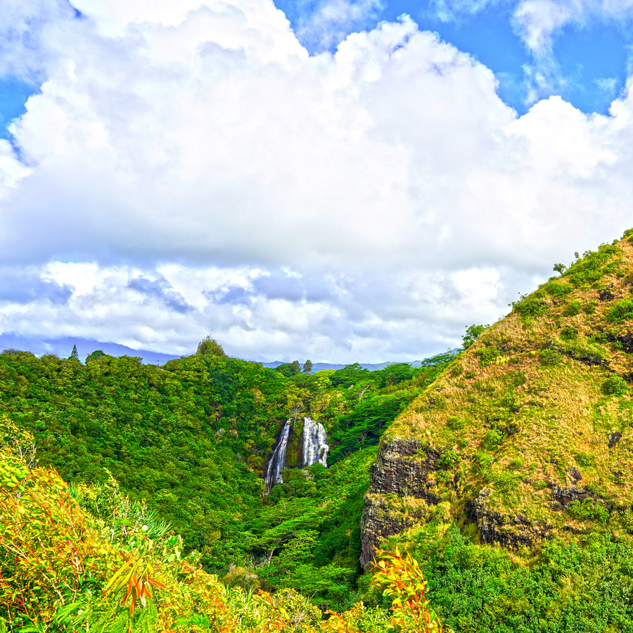 The Falls at the Mountain Overlook on Kauai Square  Print