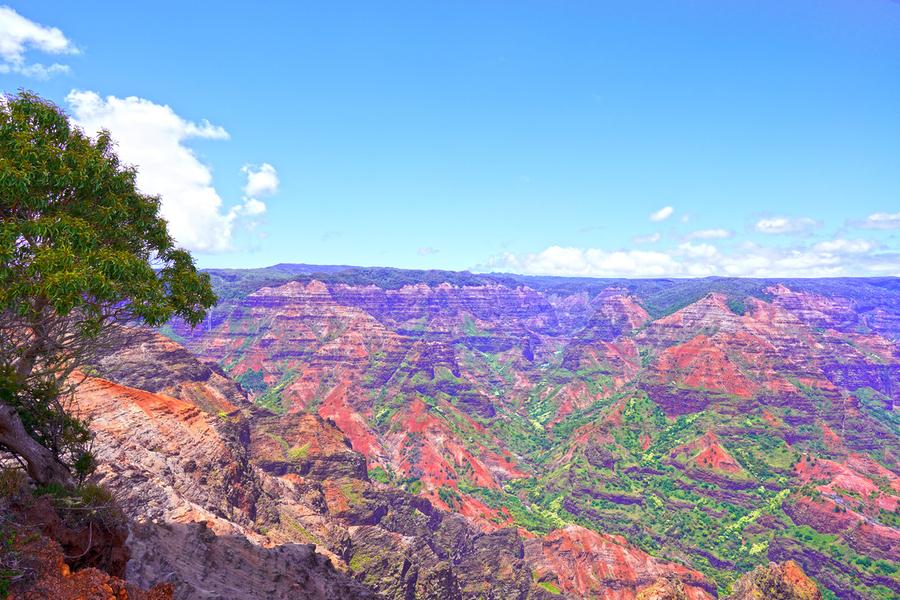 Waimea Canyon on the Island of Kauai  Print