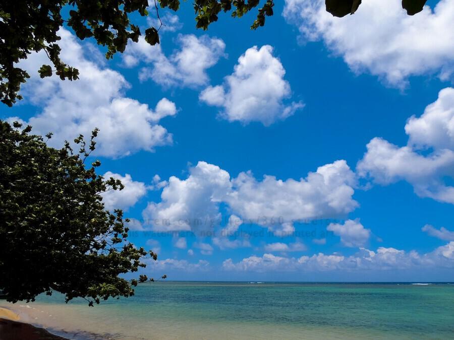 Turquoise Waters & Blue Skies  Print