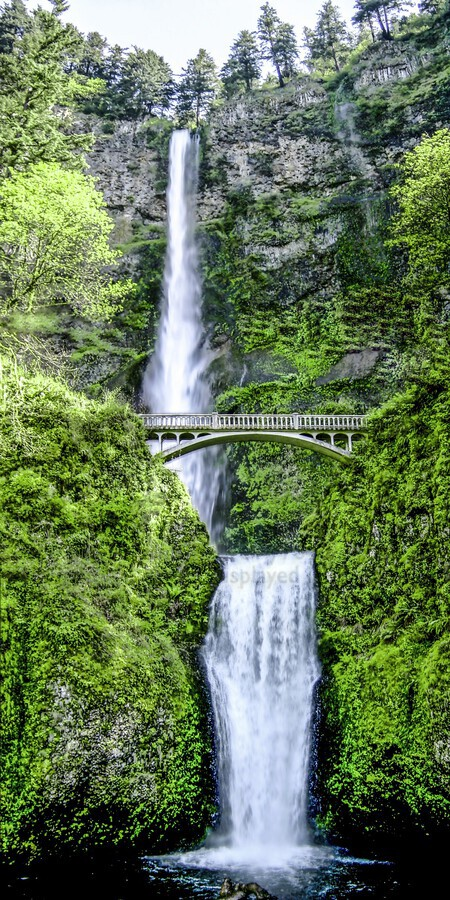 I Dreamed of Waterfalls  Print
