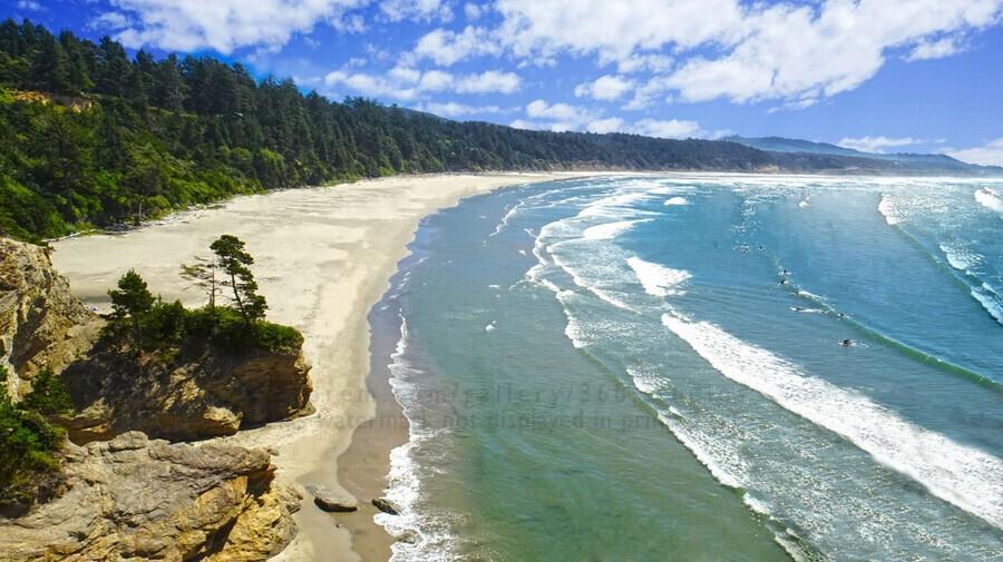 Wild Oregon Coast  Print