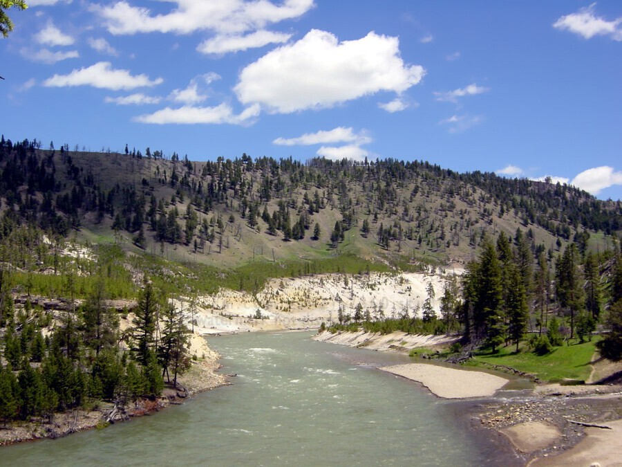 Yellowstone National Park 3  Print