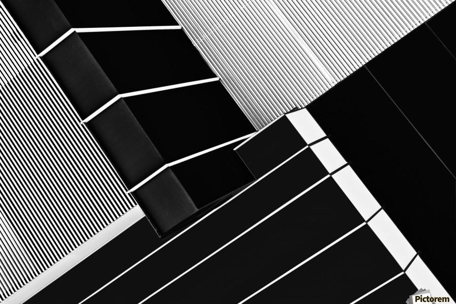 Fragile Symmetry  Print