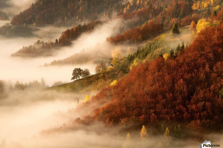 November's fog  Print