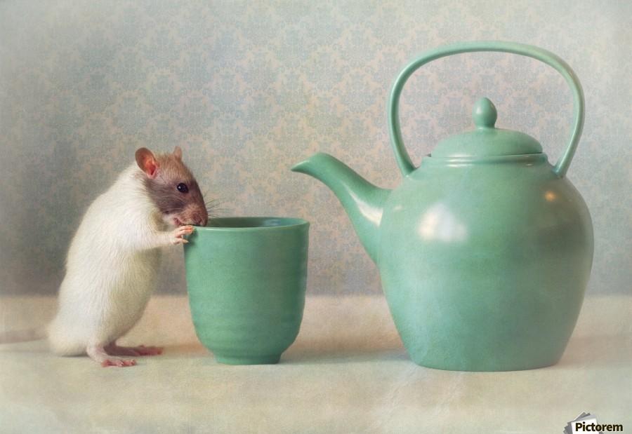 The Teapot  Print
