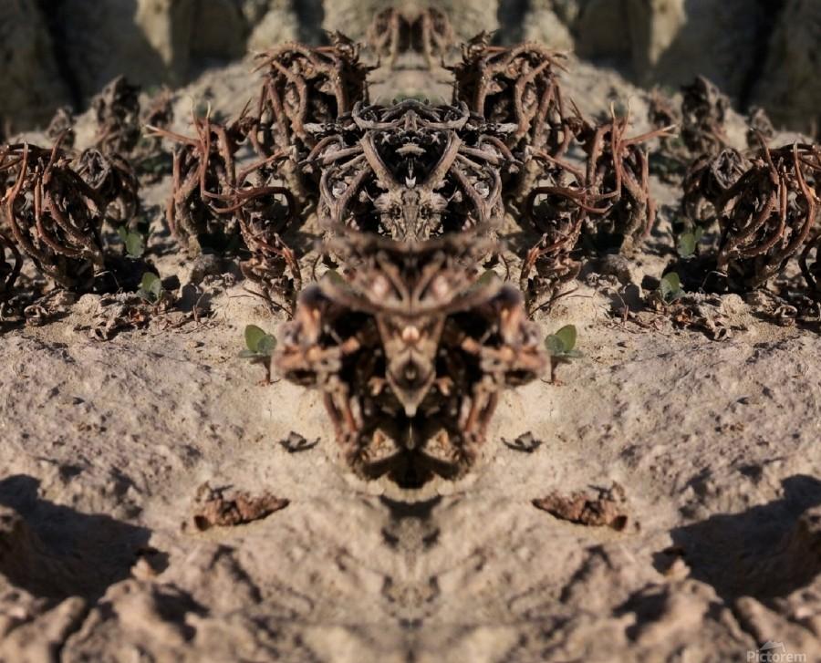 Ox  Print