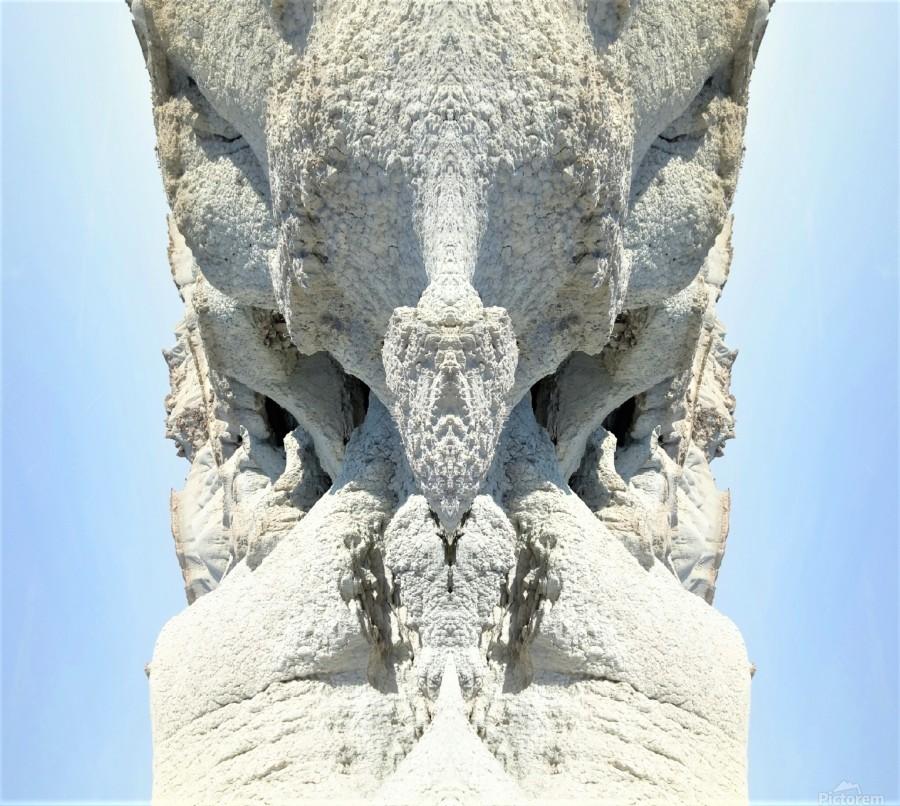 The White Monk   Print