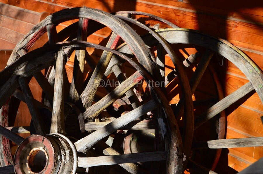 Wagon Wheels.05  Print