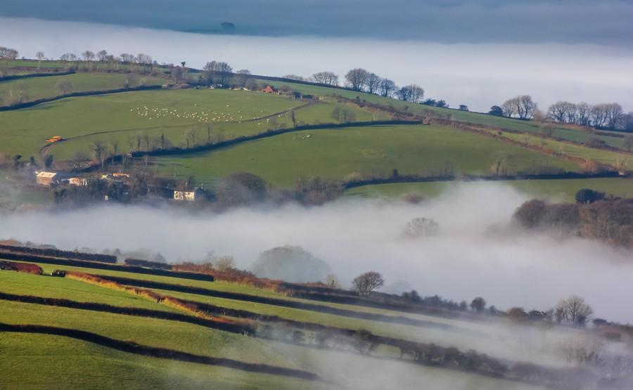 Agricultural mist  Print