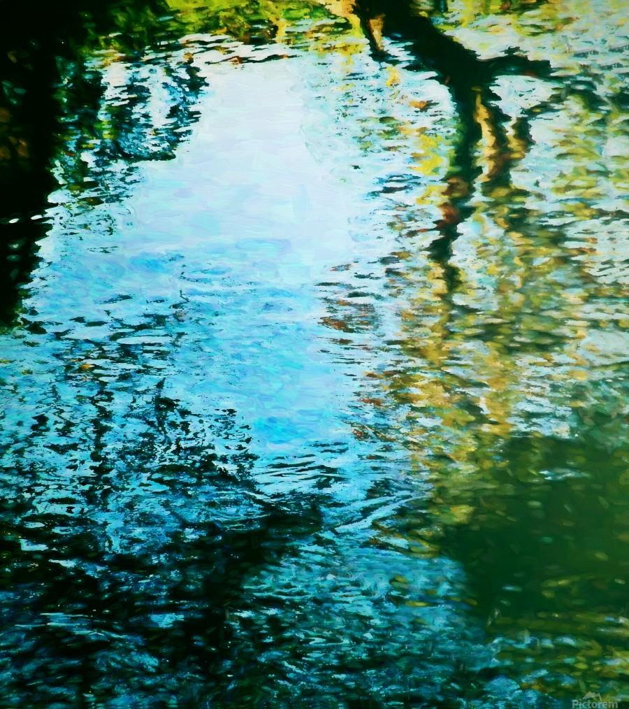 Nature reflections  Print