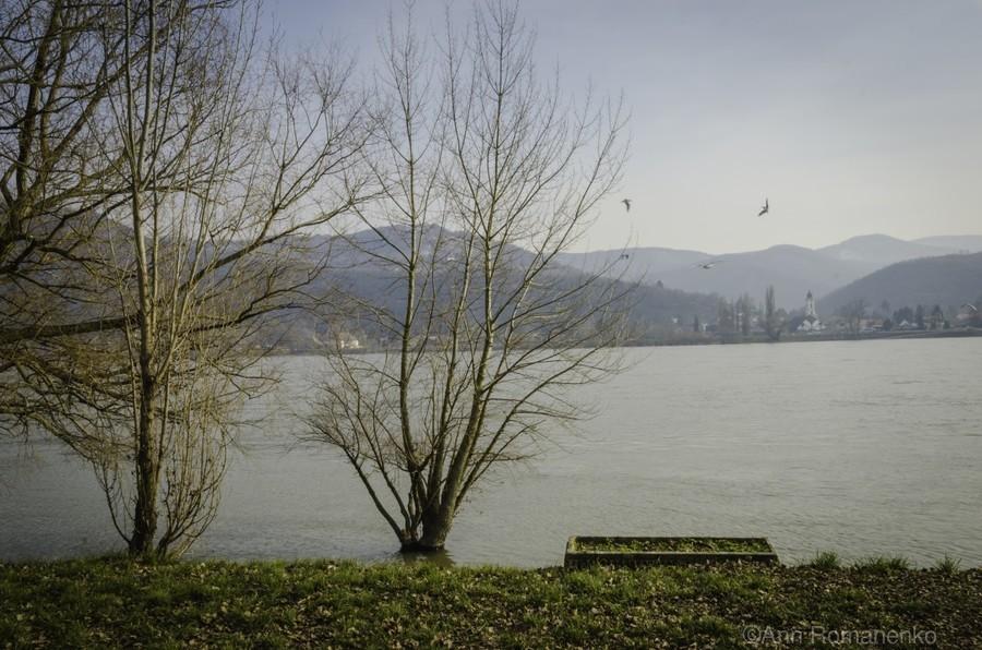 Spring at the River   Print